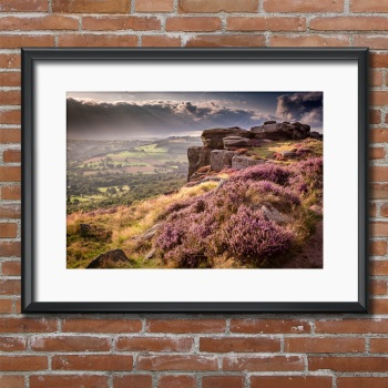 Curbar Edge Heather