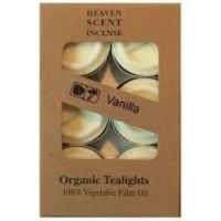 Organic T-Lights ~ Vanilla