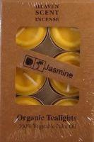 Organic T-Lights ~ Jasmine