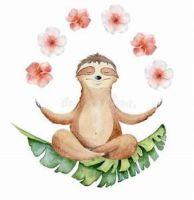 sloth harmony