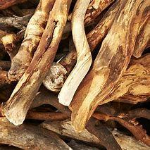 native sandalwood