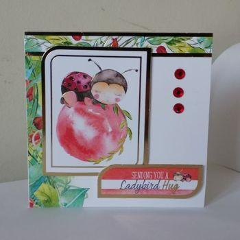 Sending you a Ladybird Hug