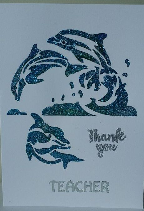 Thank you Dolphins