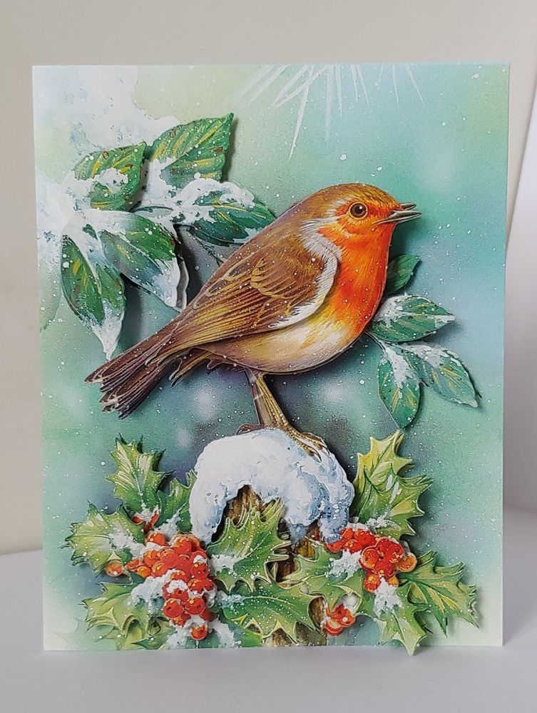 Robin Merry Christmas