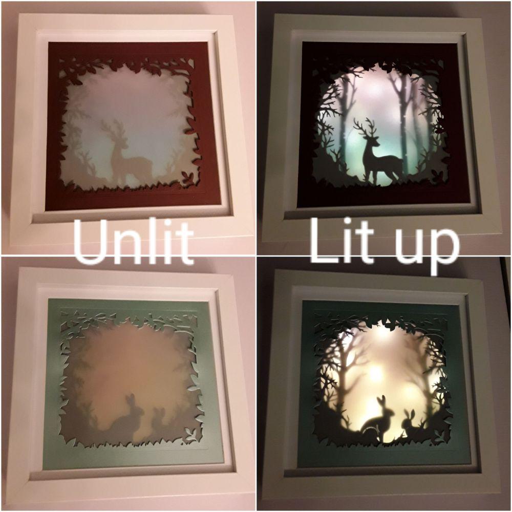 Lit up Shadow Box Frames