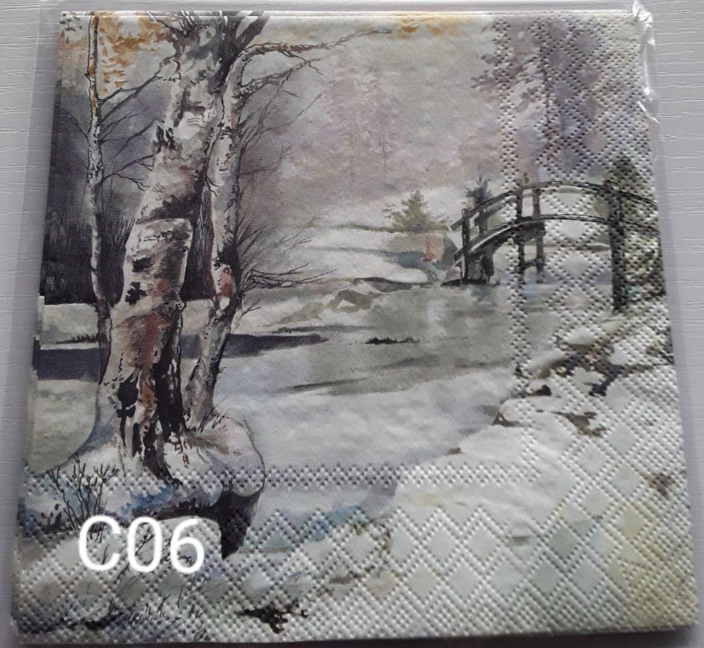 C06 - Forest Scene