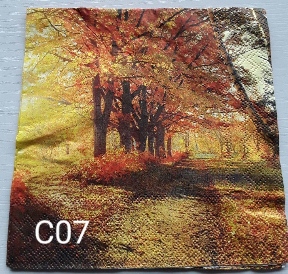 C07 - Forest Scene