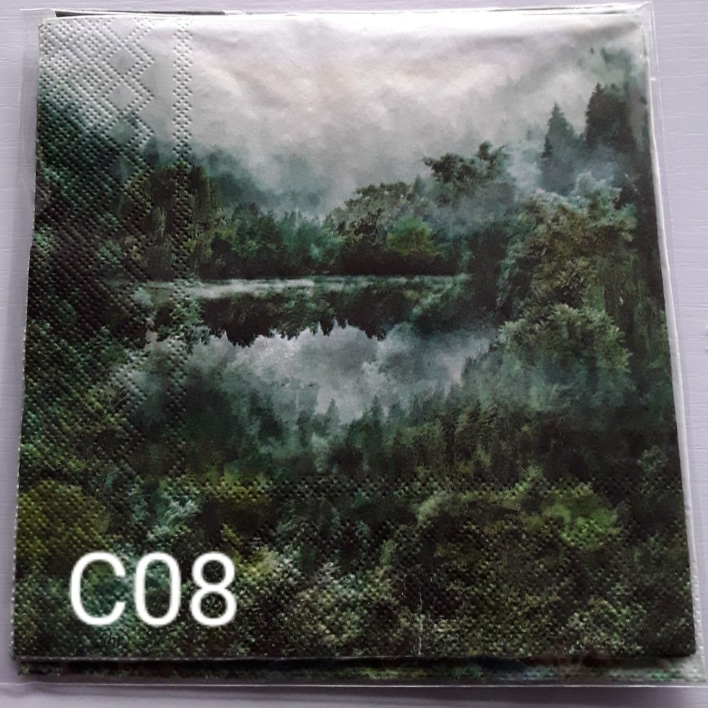 C08 - Forest Scene