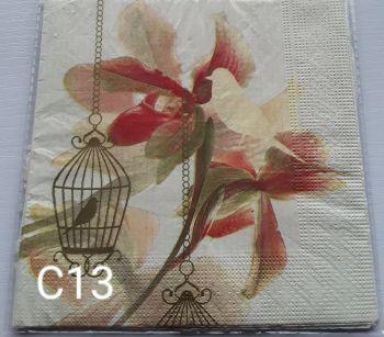 C13 - Birdcage