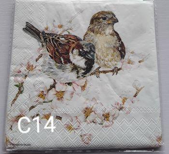 C14 - Bird & Blossom