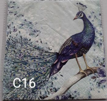C16 - Peacock