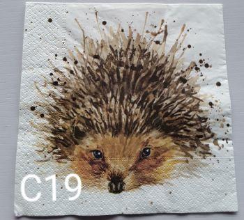 C19 - Hedgehog