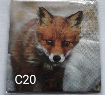 C20 - Fox