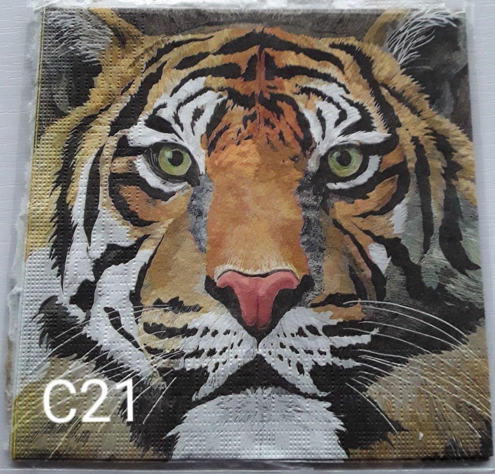 C21 - Tiger