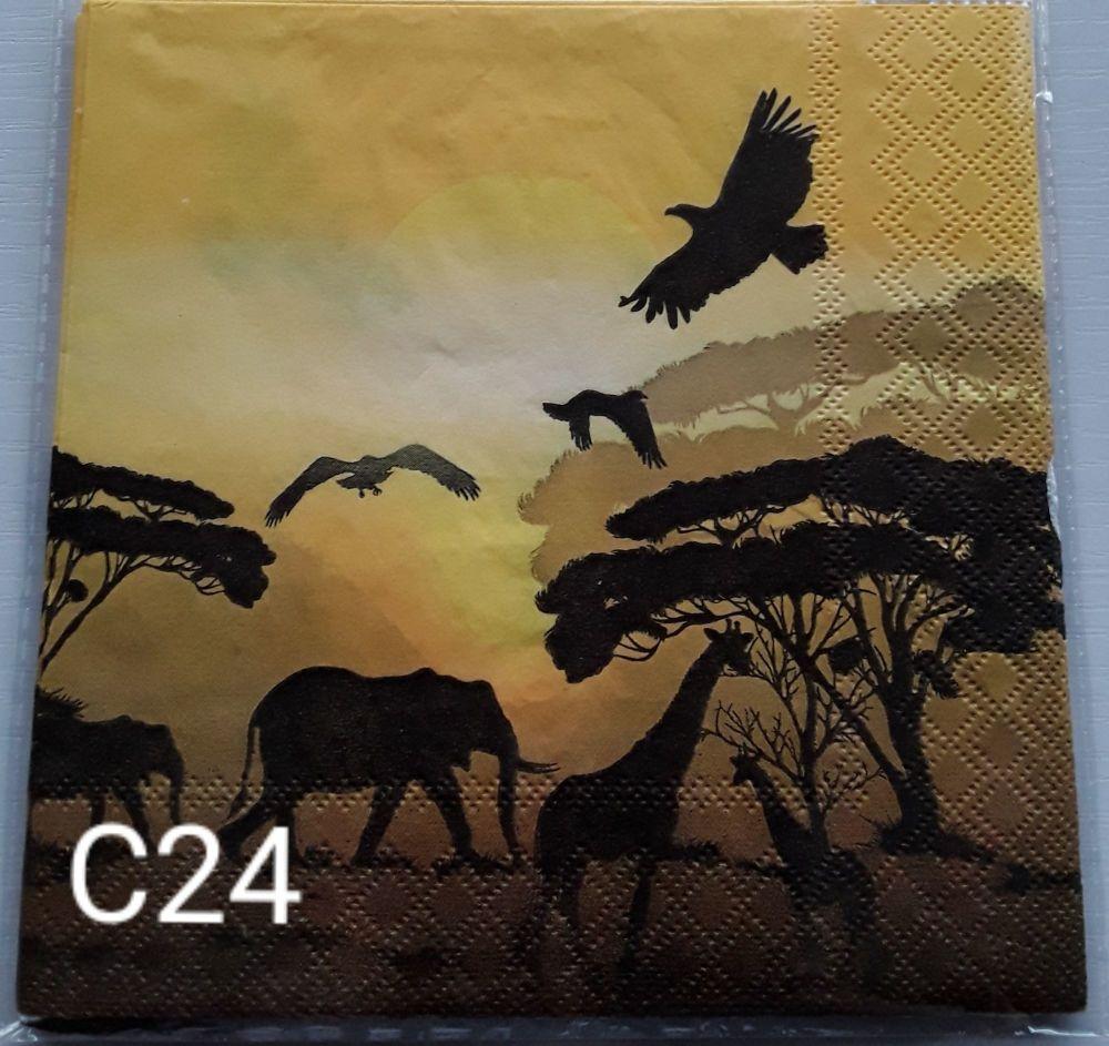C24 - African Savannah