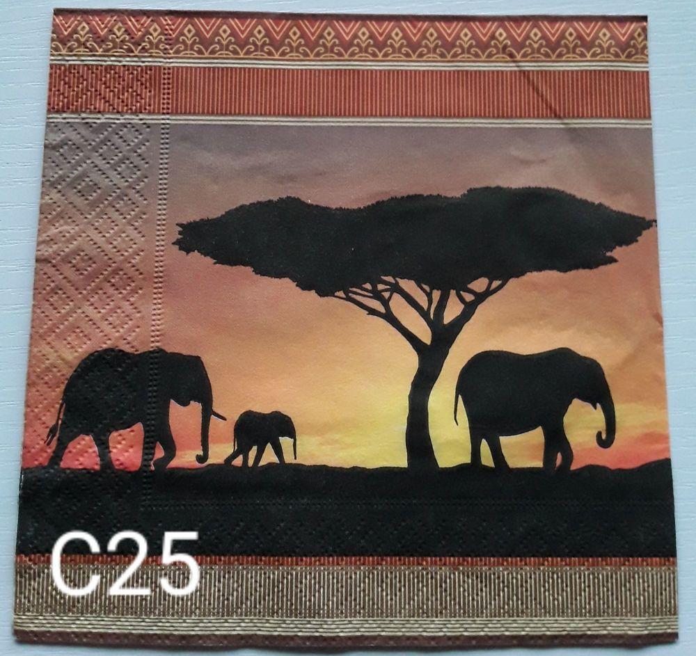 C25 - African Savannah
