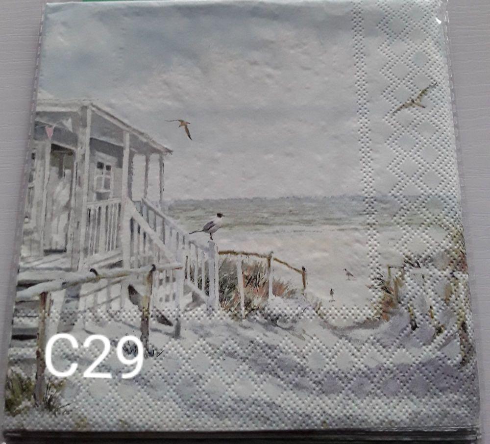 C29 - Beach scene