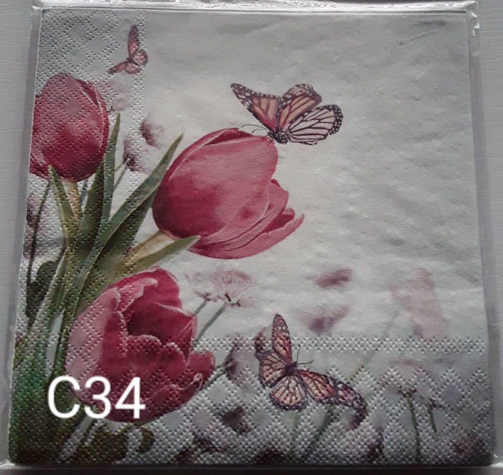 C34 - Butterflies