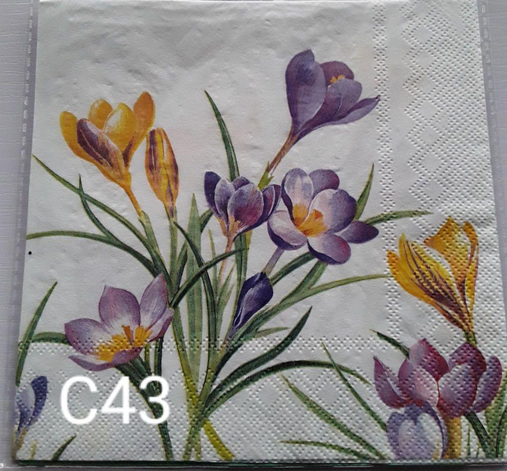 C43 - Flowers