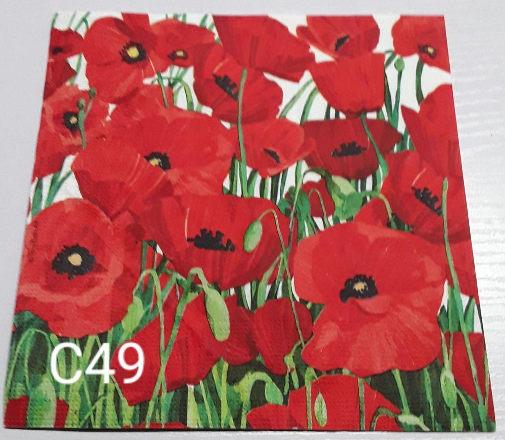 C49 - Poppies