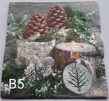 B05 - Pine Cones