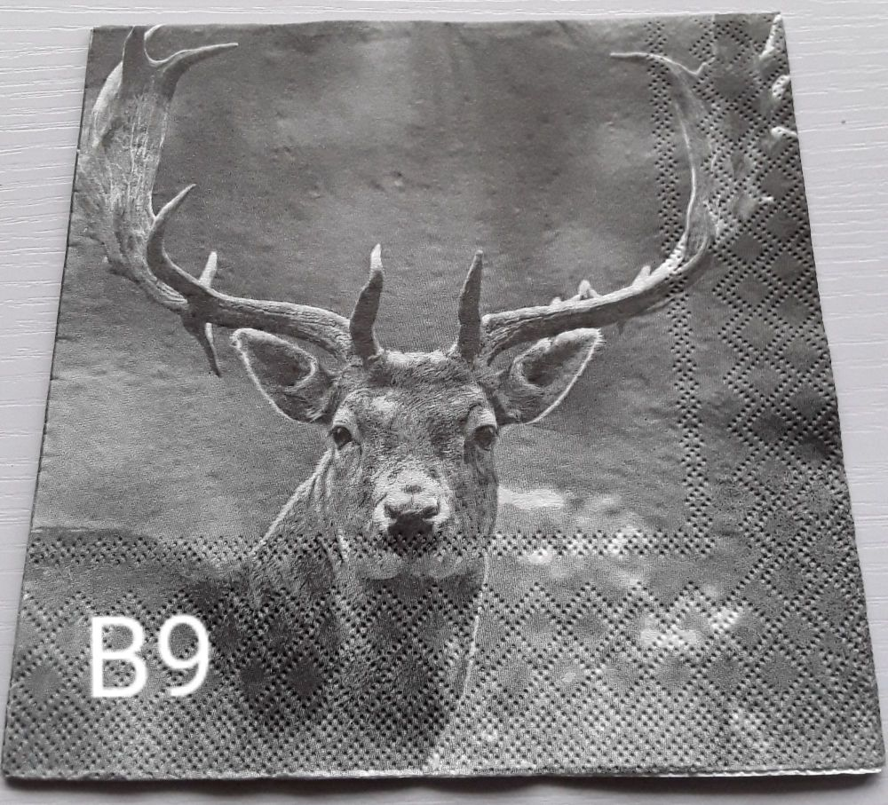 B09 - Stag