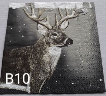 B10 - Stag