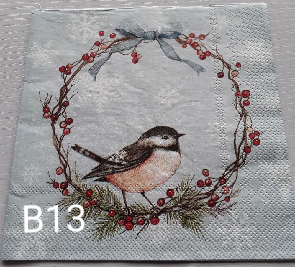B13 - Birds