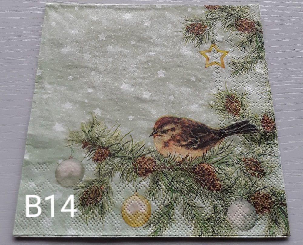 B14 - Birds