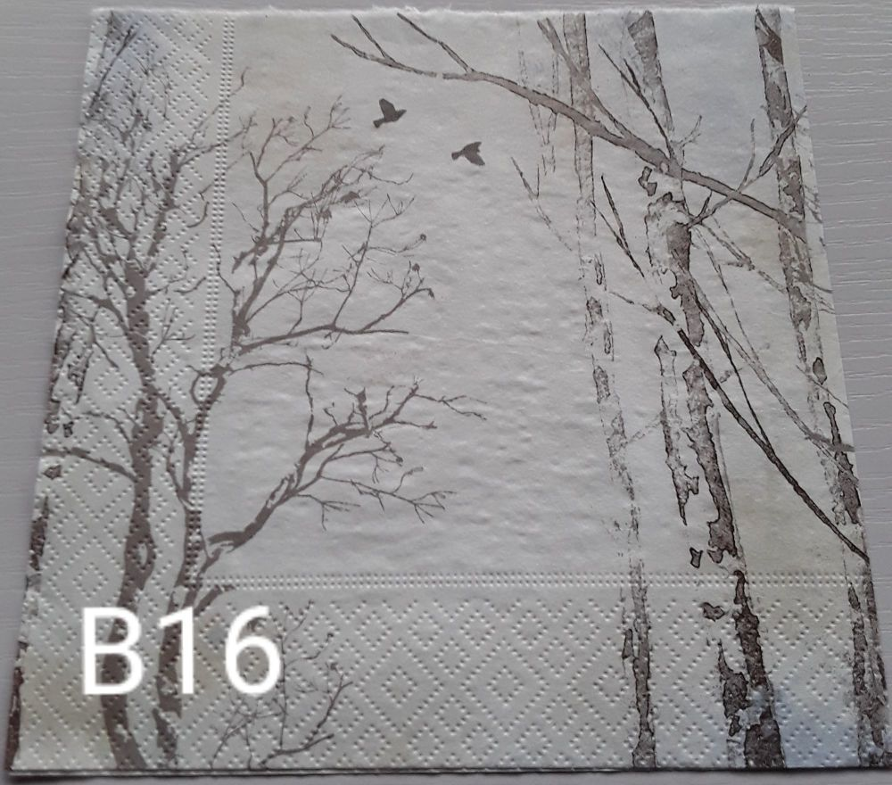 B16 - Trees
