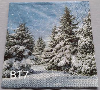B17 - Trees