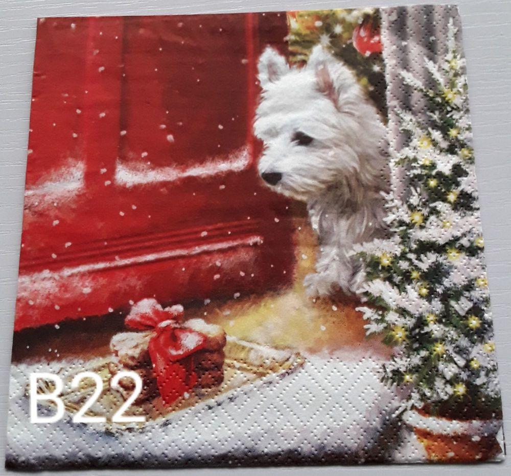 B22 - Doorstep Delivery