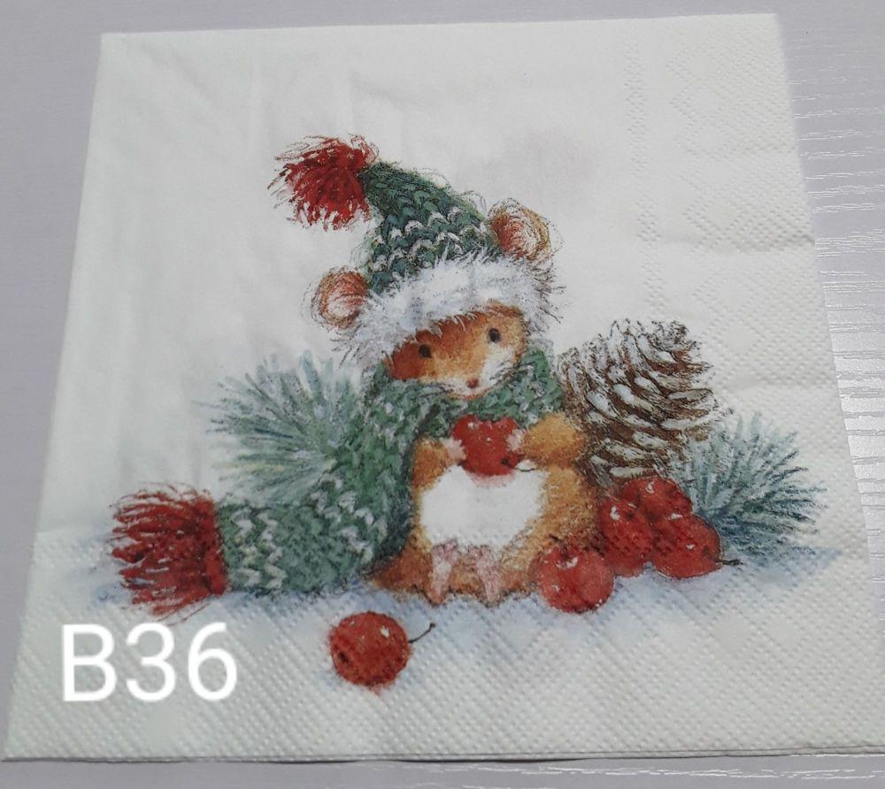 B36 - Cute Mouse