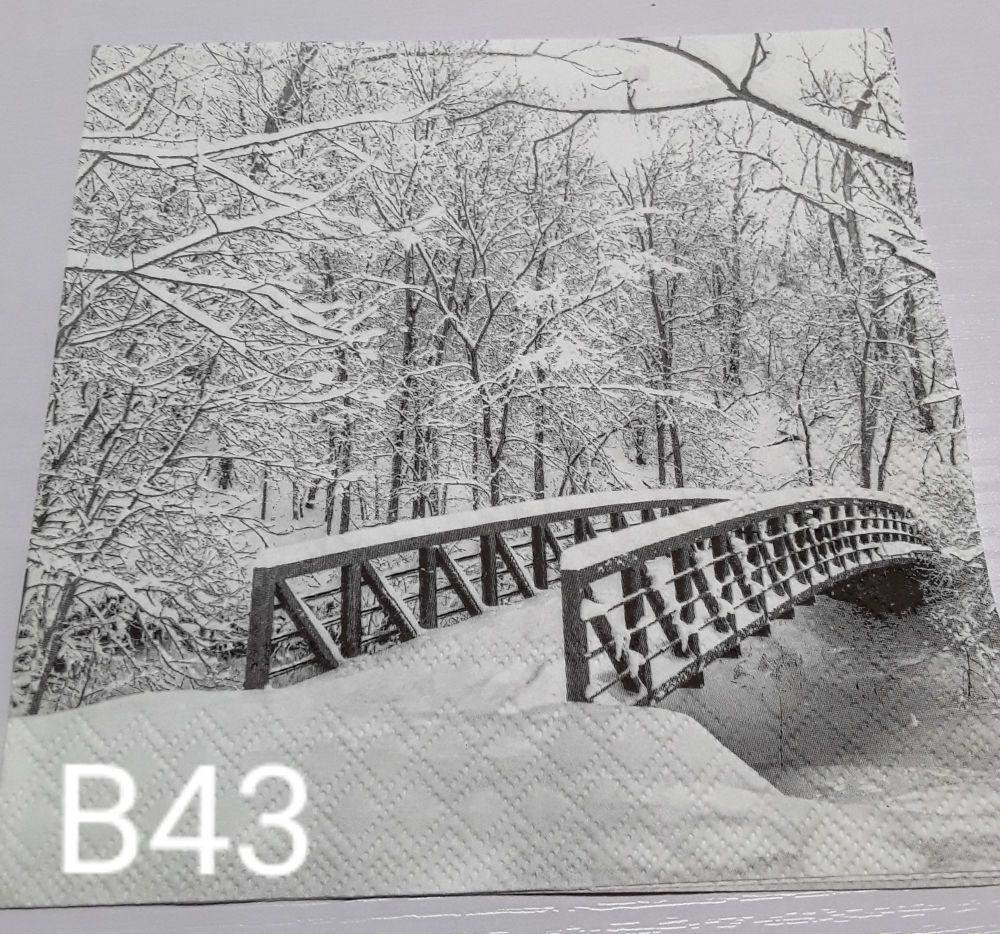 B43 - A Winter Walk