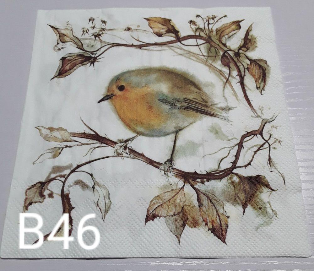 B46 - Robin