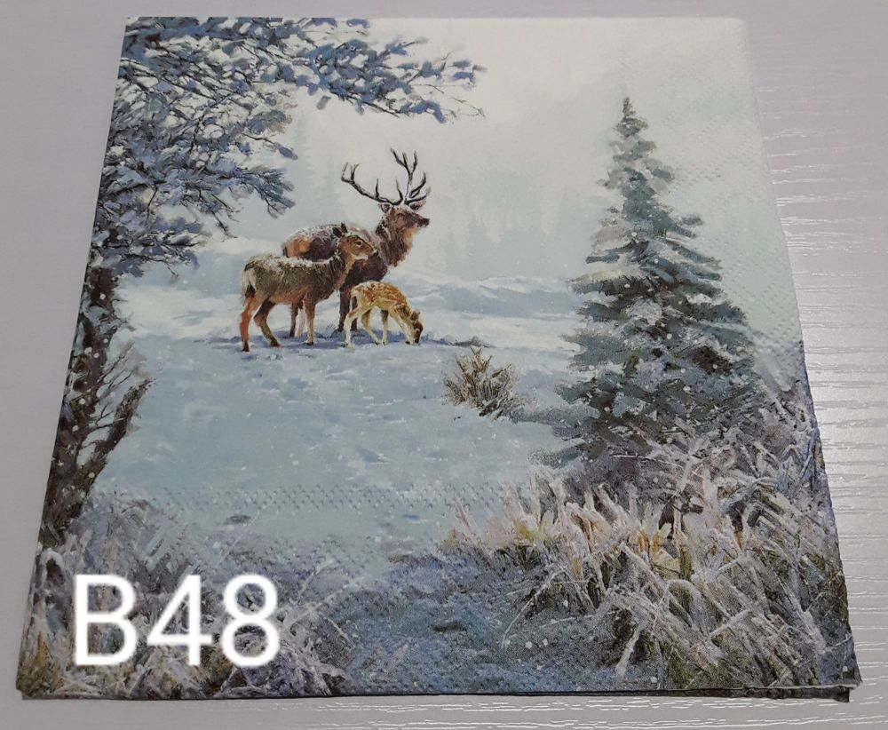 B48 - Stag
