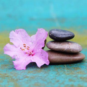 1.5 Hour Massage Gift Voucher