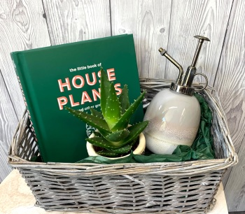 The House Plant Gift Basket