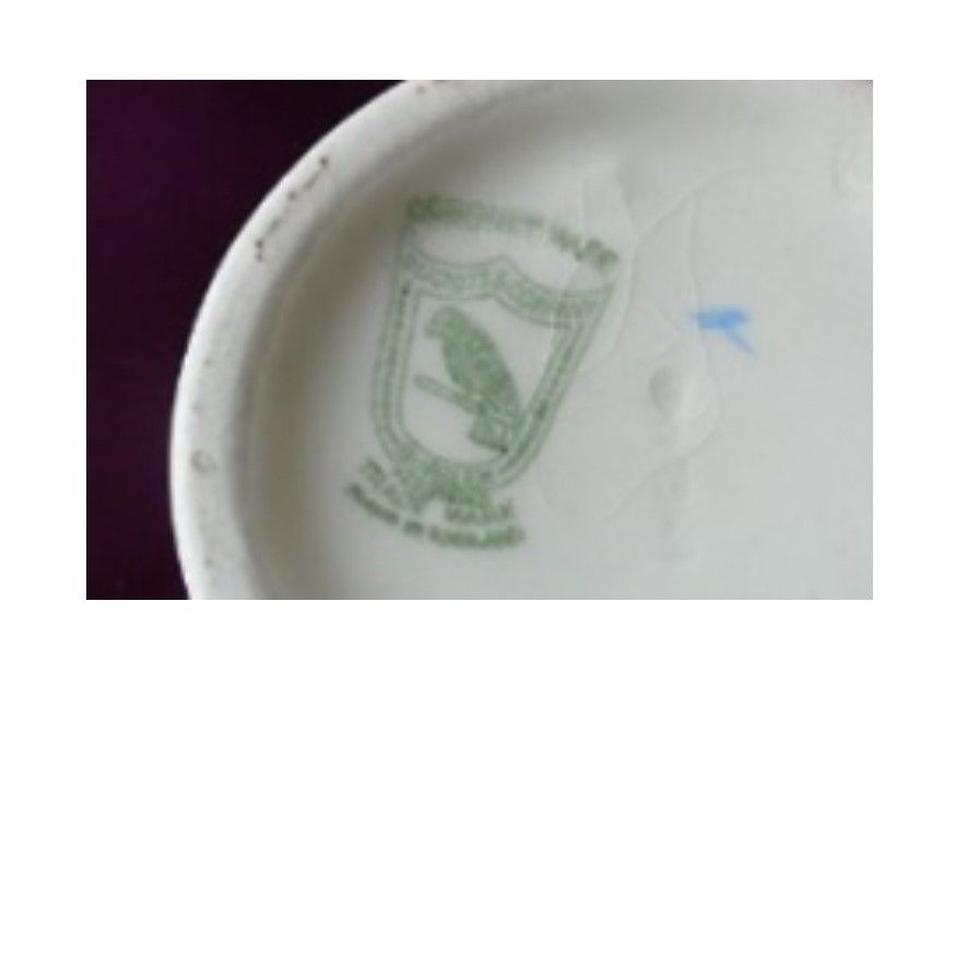cup 005a