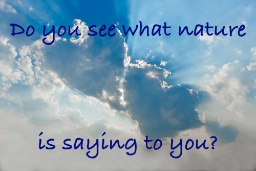 Do you see what nature is saying to you?