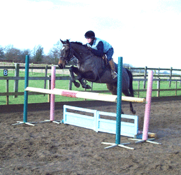 jumping an oxer