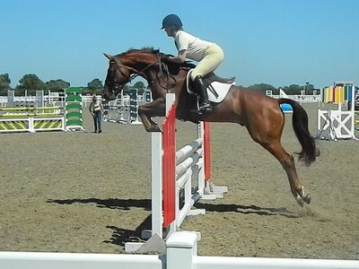 Rachel show jumping