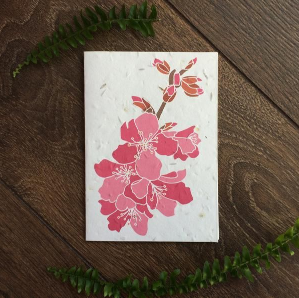 A plantable card featuring an illustration of a cherry blossom