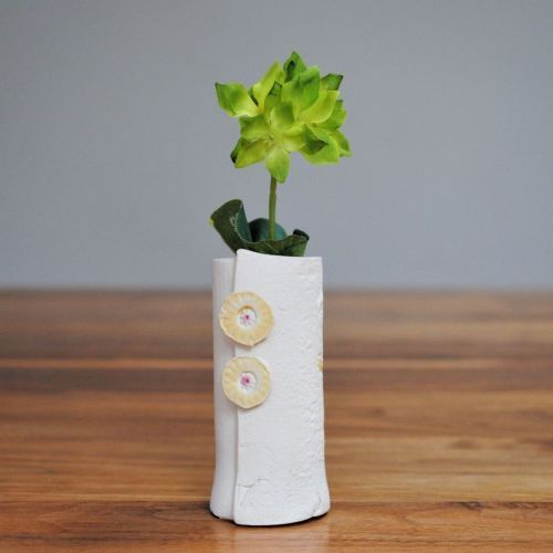 Ceramic white vase with a green plant in the top