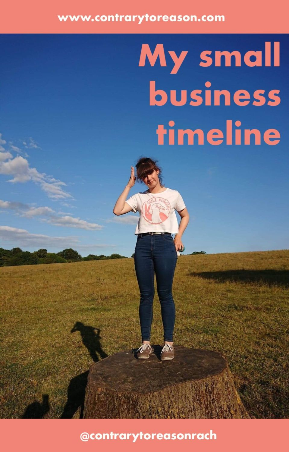 My small Business timeline