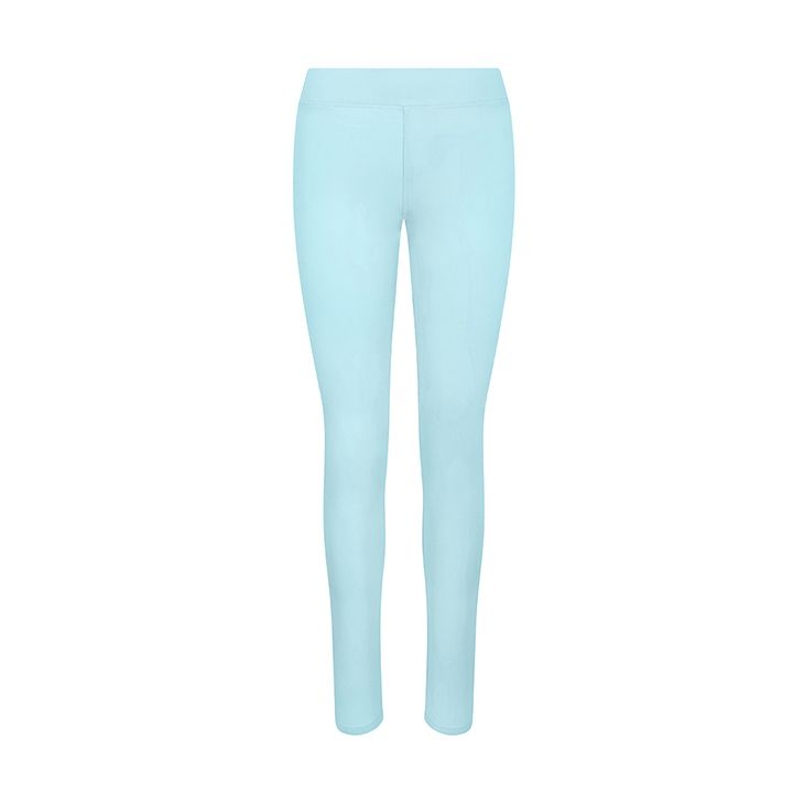 Women's Hair Resistant Leggings - Mint