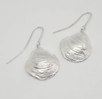 Exquisite Silver Shell Earrings .  Item EL008