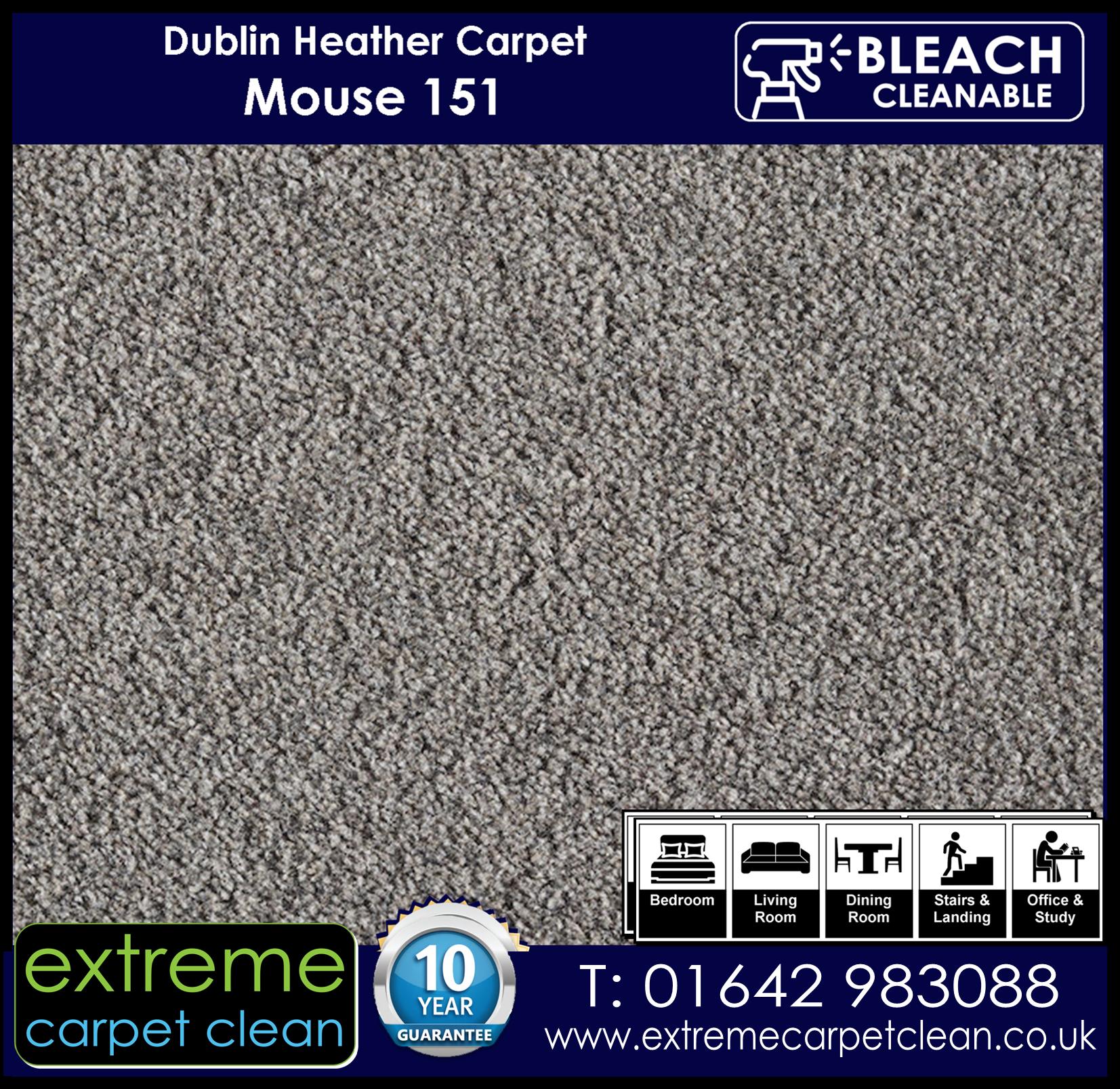 Dublin Heather Carpet Range. Mouse 151 Extreme Carpet Clean