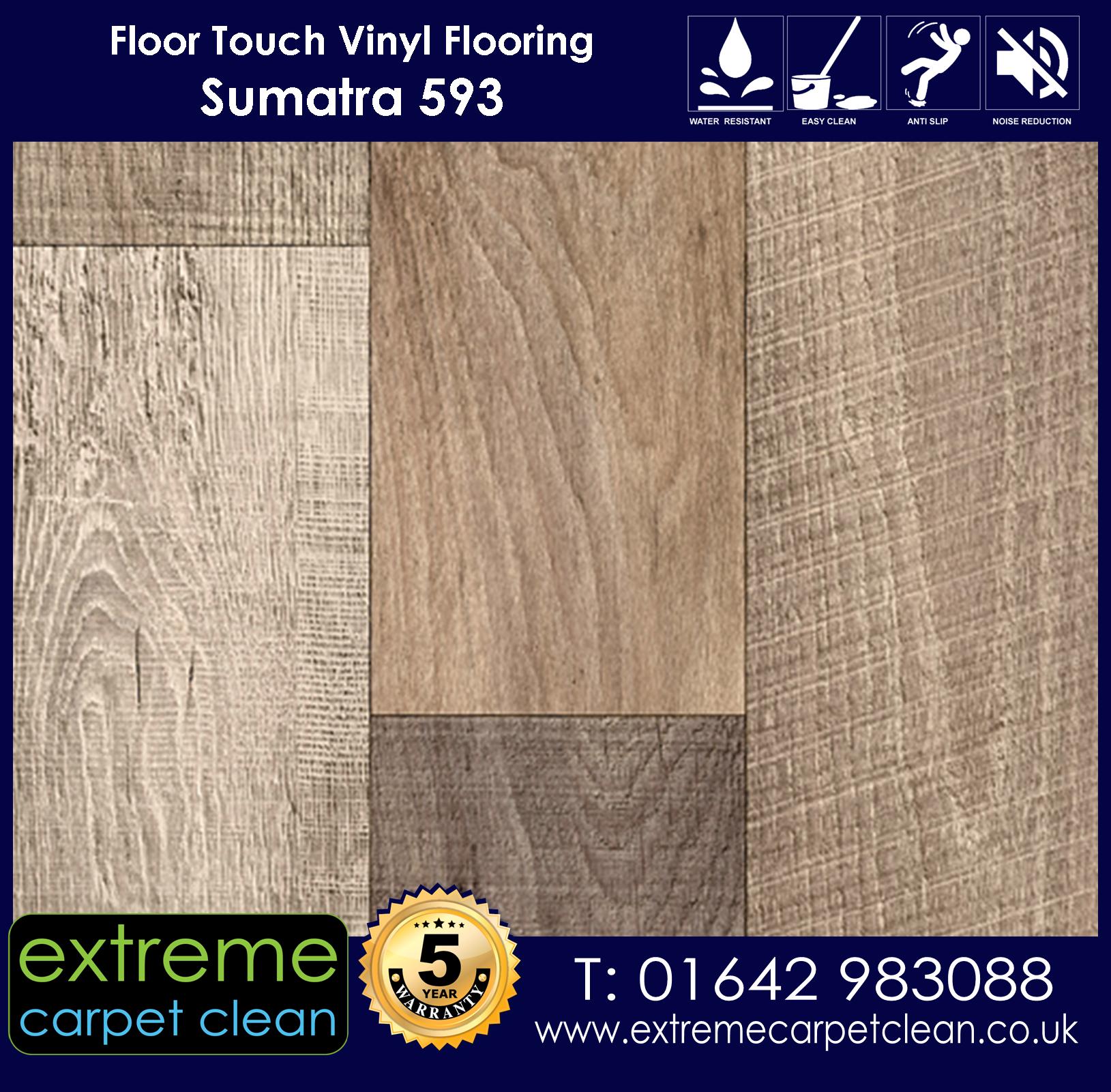 Extreme Carpet Clean. Vinyl Flooring. Sumatra 593