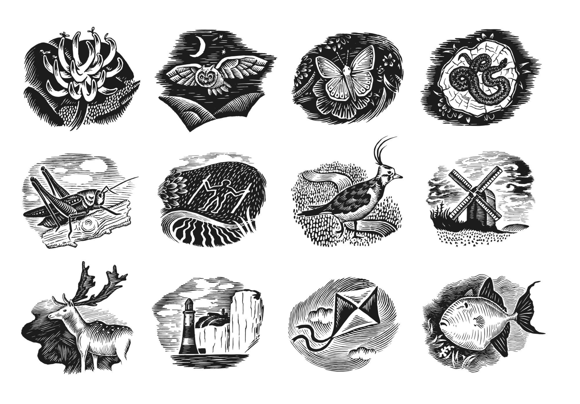 final bus illustrations-final LR-pdf